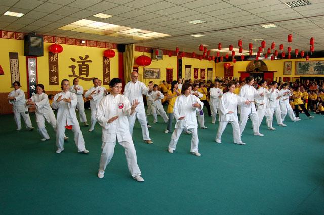 Festa della Scuola 2008